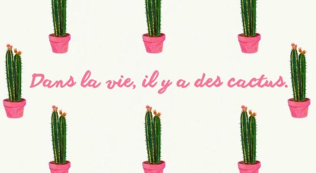 Bannière dans la vie il y a des cactus dracipana